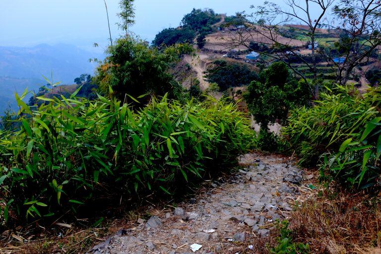 Vihreää vuoristoista maisemaa Nepalissa.