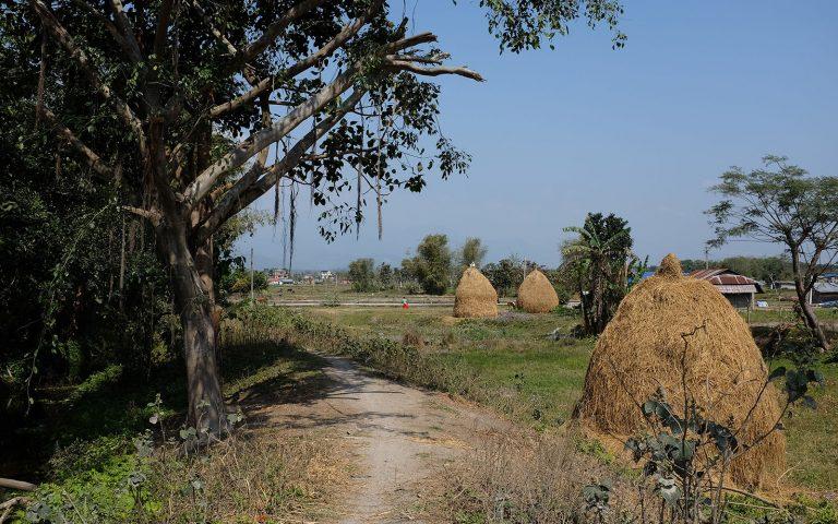 Maaseutunäkymä vihreitä peltoja ja puita pellolla kolme heinäsuovaa.